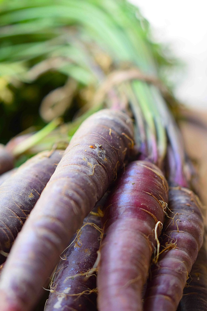 purple-carrots