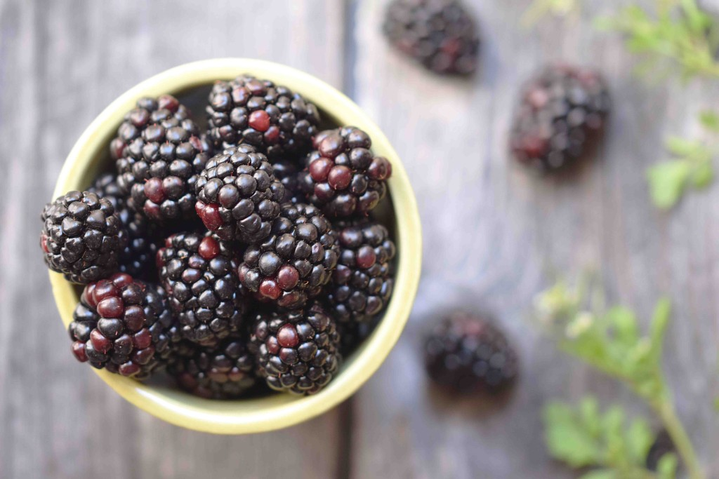 rustic blackberries in bowl